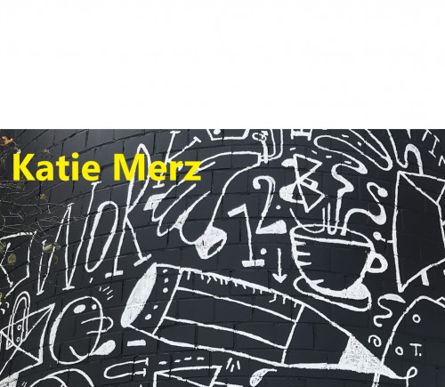 KATIE MERZ: LIVE THE QUESTIONS
