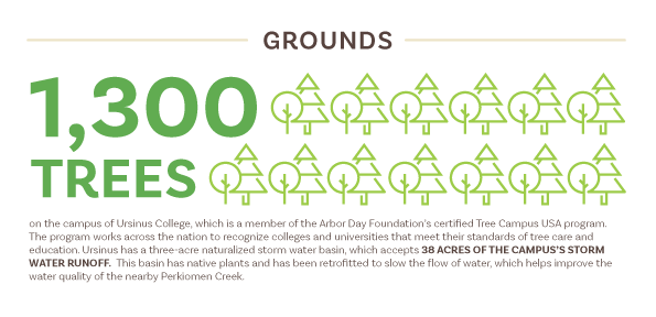 grounds stats