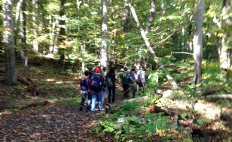 Students explore an important forest.