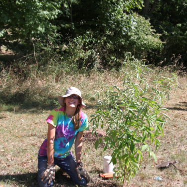 Planting trees as part of watershed conservation efforts in the Perkiomen.