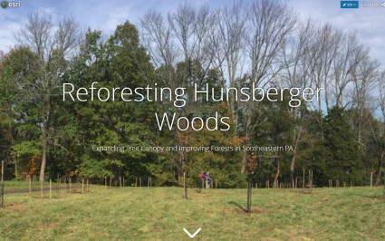 Reforesting Hunsberger Woods