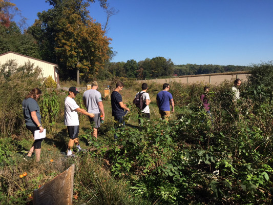 "Students explore the ""yard""."