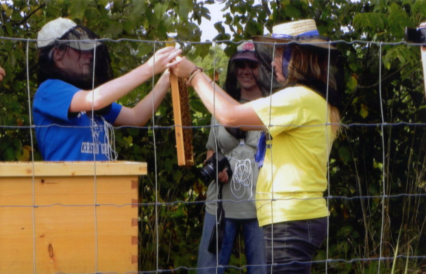 Learning to handle the bees at the farm.