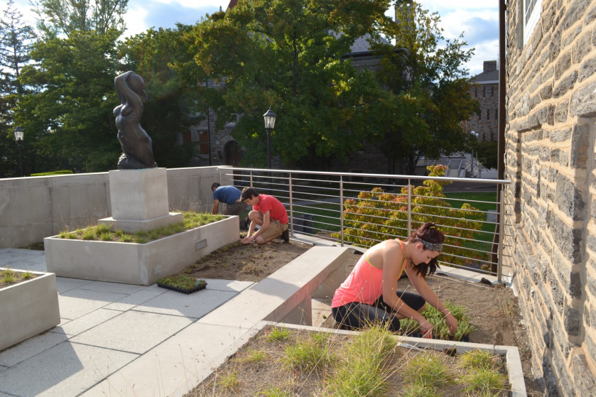 The Office of Sustainability helps make Ursinus a greener place.