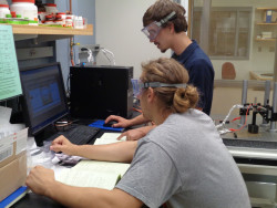 Jon Stoeber '17 (in foreground) works on a research project with a classmate in Professor Mark Ellison's lab.