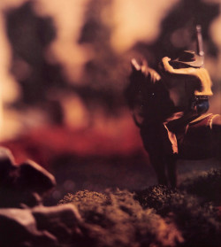The Berman Museum has been gifted 34 large-scale, 20-by-24-inch Polaroid photographs from artist David Levinthal's 1...