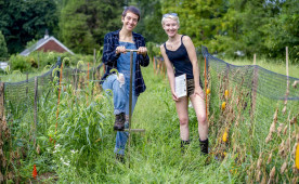Ursinus students Madison Moses (left) and Jess Greenburg work on the Ursinus farm.