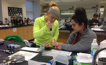 Ursinus students in Rebecca Roberts's lab perform interdisciplinary research outlined in the BASIL curriculum, which is be...