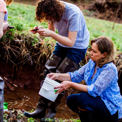 Prof. Kate Goddard performs field work with students during a 2014 class.