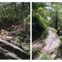Sarah Kaufman, Devil's Pool Diptych #1, Digital c-print from medium format film, 2014
