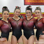 The Ursinus College gymnastics team