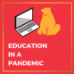 Education in a Pandemic
