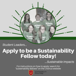 2018 Applications for Fellows are Open