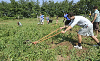 Students take part in Saturday of Service at the Organic Garden.
