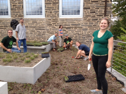 Students, faculty and staff work together to replant the Berman green roof.