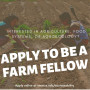 Students can apply now to be a Farm Fellow with the office of sustainability!
