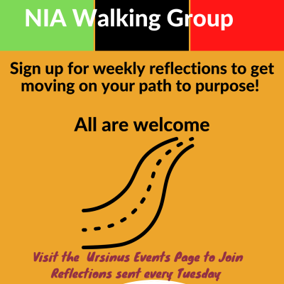 NIA Walking Group